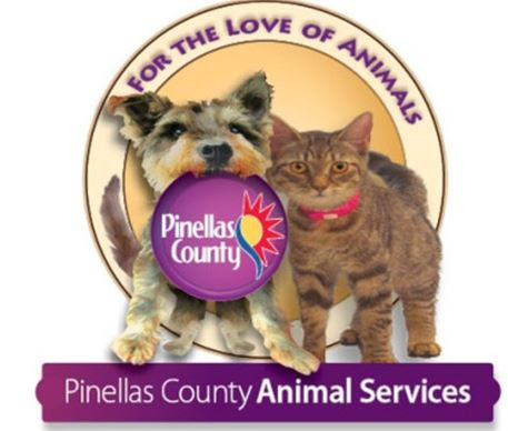 Pinellas County Pet Adoptions at Animal House Naturals