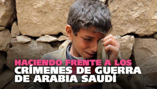 Saudi Arabia: No More Weapons For You