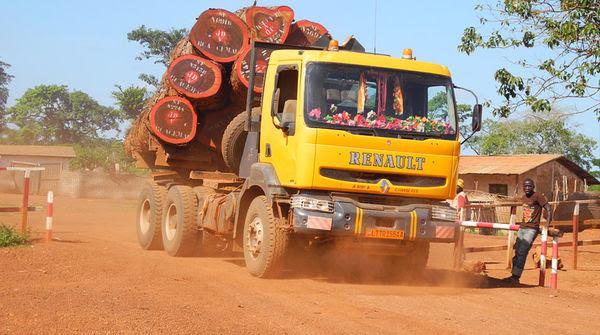 Un camion trasporta il legname per l' esportazione illegale