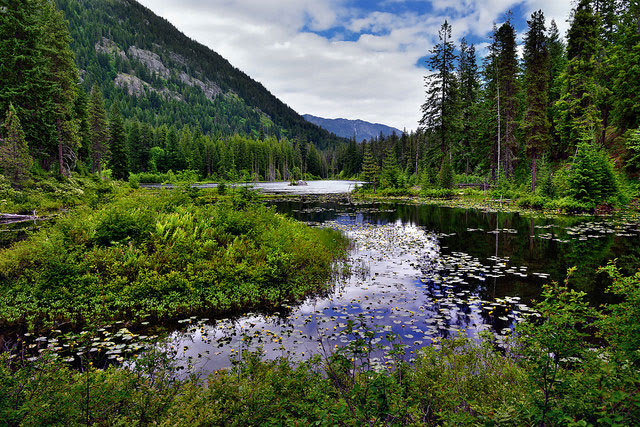 Howard                         Lake North Cascades National Park, Washington