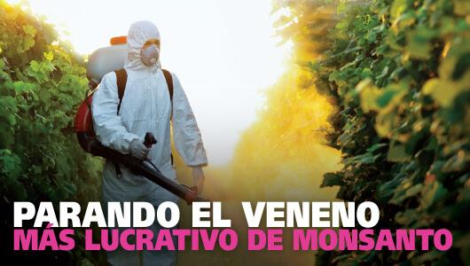 Parando el veneno más lucrativo de Monsanto