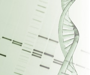 Study shows an unusual mechanism could have thwart the invasion of human genome by junk DNA