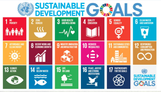 UN Sustainable Goals.png