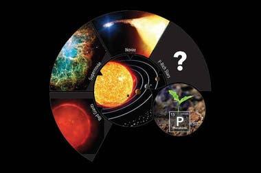 Esquema con posibles fuentes estelares de fósforo en nuestra galaxia (gigantes rojas, supernovas, novas y estrellas ricas en este elemento esencial para la vida). / Gabriel Pérez Díaz - SMM (IAC)