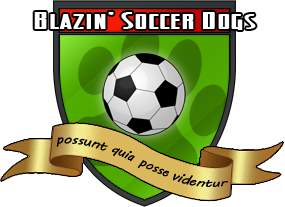 soccerdogs.png