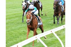 Sweet Melania wins the Jessamine Stakes at Keeneland