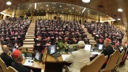 2019.10.26 Sinodo dei Vescovi sedicesima Congregazione generale