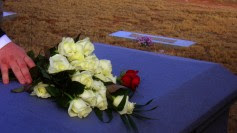 Roses-on-coffin-by-blmurch-at-flickr-CCBY