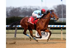 Capo Kane wins the Jerome Stakes at Aqueduct Racetrack