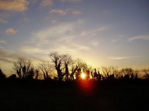 Sunrise on 1st January - the dawning of a new year and a new growing season!
