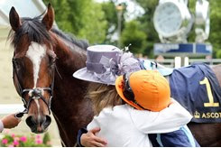 Homebred Accidental Agent eyes a victory embrace after the Queen Anne Stakes at Royal Ascot