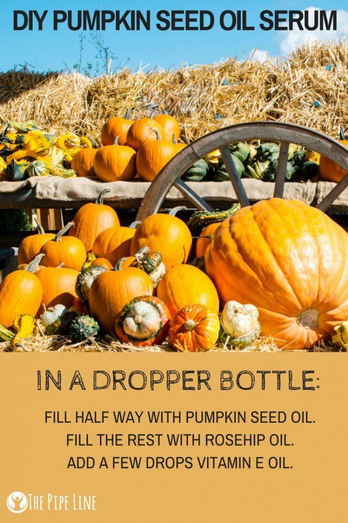 It's Pumpkin Season: Learn Why...