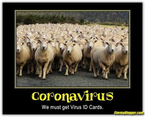 sheeple coronavirus