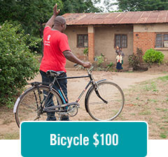 Bicycle $100