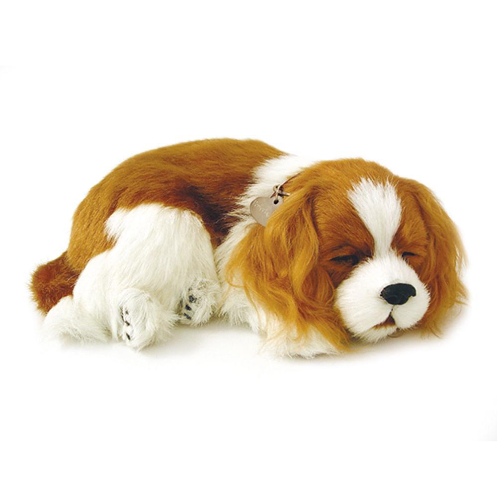 Cachorro Pelúcia Perfect Pet Cavalier King - Imex