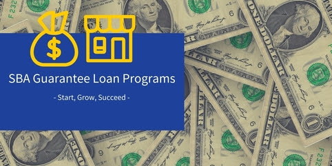 Loan Guarantee Programs