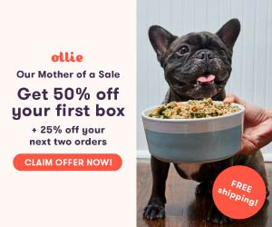 Ollie 50% OFF First Box [428131]