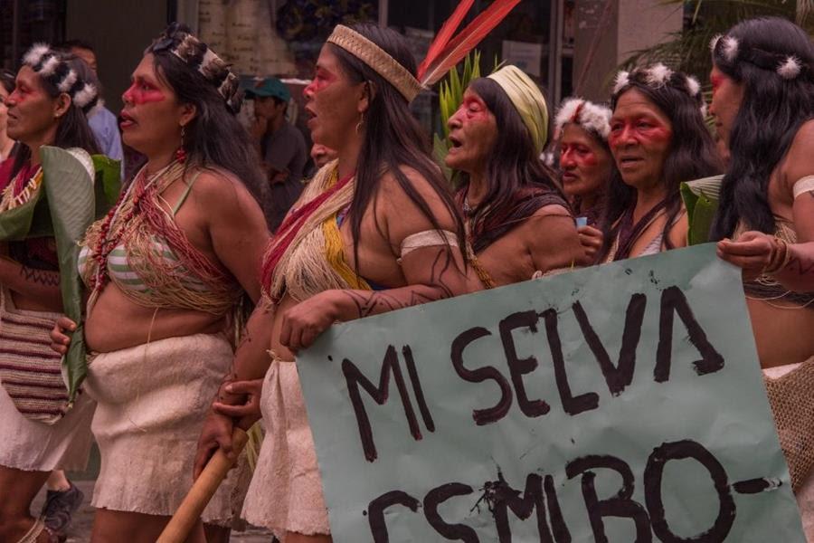 Voces indígenas en la CPI