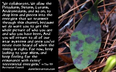 collaborating w:pleiadians, sirians, lyrans & andromedans - the 9th dimensional arcturian council - channeled by daniel scranton channeler of archangel michael