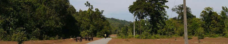 ... Agumbe