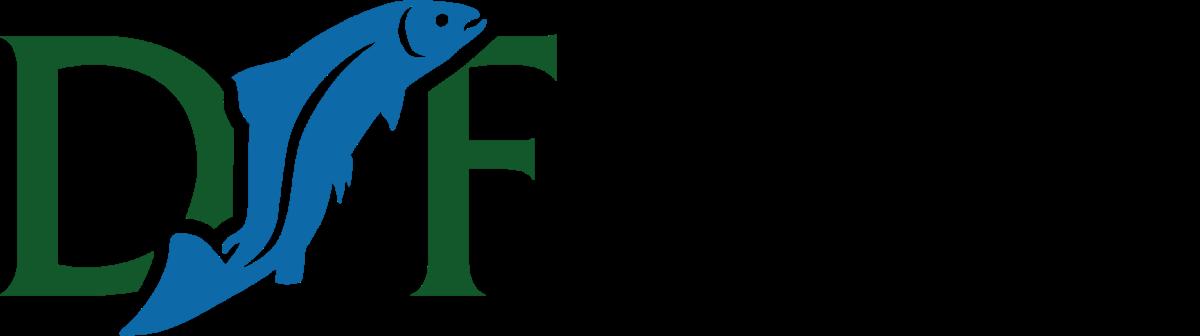 2020 DSF Logo