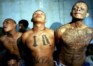 """(Los """"Zetas"""" son un grupo criminal dedicado al secuestro, la extorsión, los asesinatos, el tráfico de drogas, armas y personas)"""
