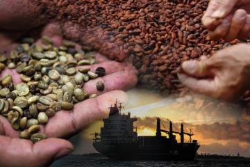 Inacal aprueba Guías de Implementación de Normas Técnicas para mejorar la competitividad de las exportaciones de la cadena de valor del café y el cacao