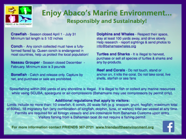 Native Stew :: Bahamas News: Friends of the Environment