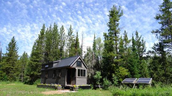 Self-sustainability and independence: A beginner's guide to living off the grid Tiny-house-grid-off-home-solar-cabin