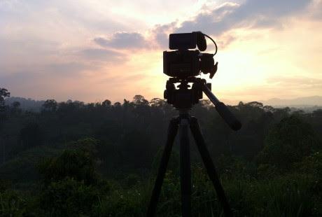 Cámara de cine rodeada de vegetación en Venezuela