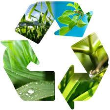 Resultado de imagen para ambiental fotos