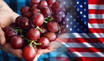 Perú es el cuarto proveedor de alimentos de Estados Unidos, participando con el 4% del total