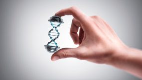 a hand holding DNA