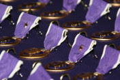 Lost Purple Hearts Returned to Families of Dead Soldiers