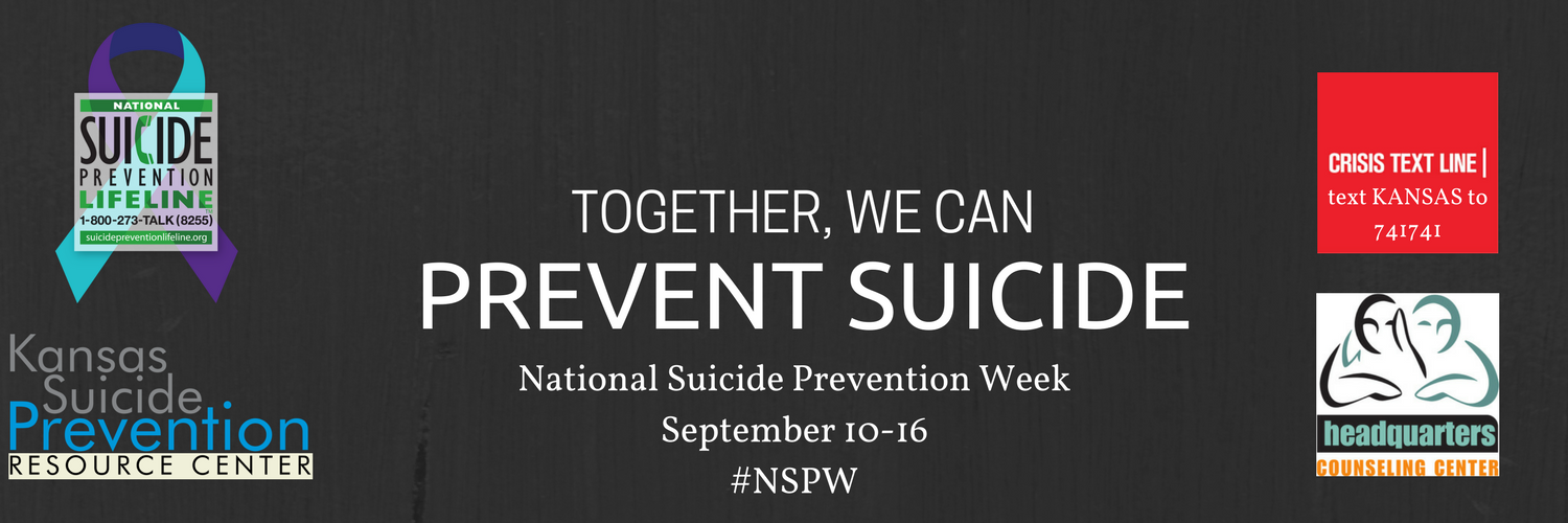 NSPW2017.png