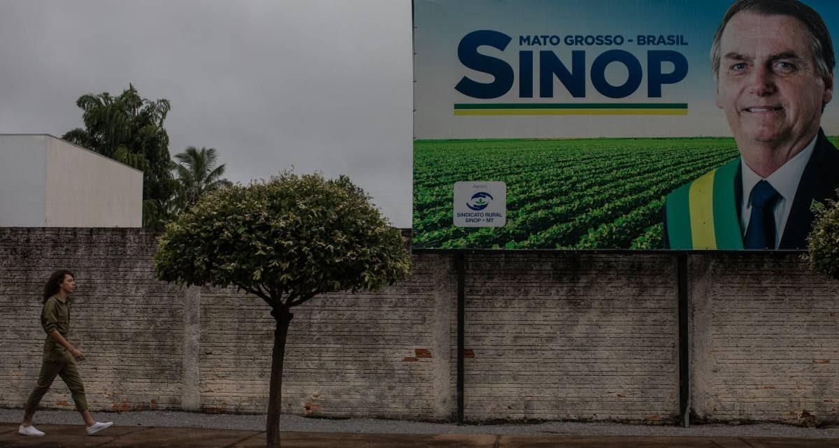 O superpoder da soja no Brasil