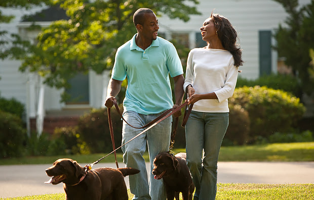 A couple walking their dogs outside.