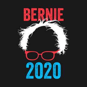 2019 03 03 01 Bernie 2020