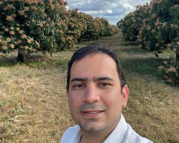 El mango brasileño se marca como objetivo entrar en China e impulsar el desarrollo de su mercado interno
