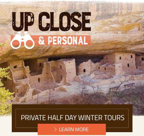 PRIVATE HALF DAY WINTER TOURS - LEARN MORE