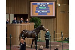 Galileo's daughter Key To My Heart brings $1.75 million from Summer Wind Equine in foal to War Front, who was the leading covering sire
