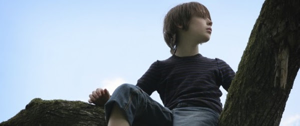 Boy-Tree_586x300-586x300