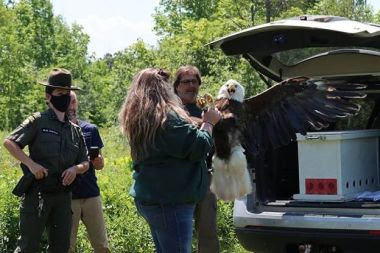 ECO Stands behind two other people with the hatch of a truck open as they get an eagle out of the back