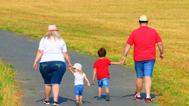 Estudo avalia propensão a doenças metabólicas em filhos de mães obesas