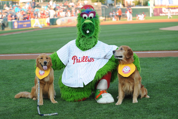 Phanatic_Dogs_email