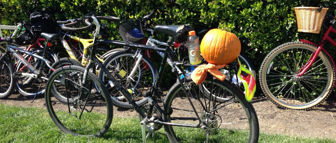 bikes_and_pumpkins_2.jpg
