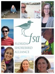 Florida Shorebird Alliance Crew