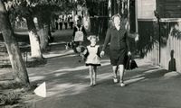Small blog chernobyl