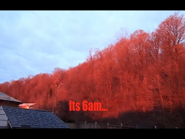 Strange Phenomenon - Entire Forest Turns *RED* in Ontario as residents look in AWE!  Sddefault