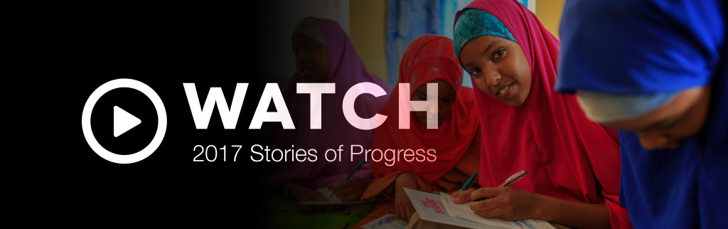Watch 2017 Stories of Progress